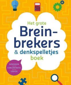 breinbrekers & denkspelletjes